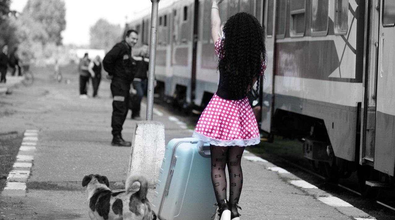 Viajar con perro en tren (1)