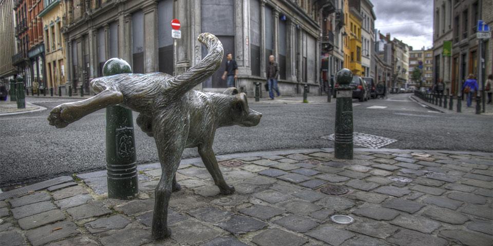 Limpiar la orina de tu perro (preview), Zinneke Pis (1)